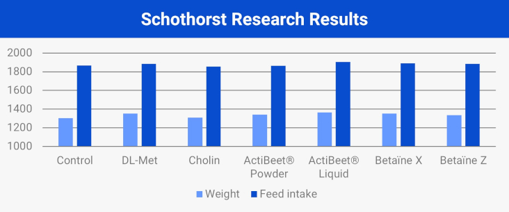 Schothorst research results